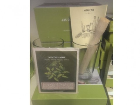 'GROW YOUR OWN MOJITO' KIT